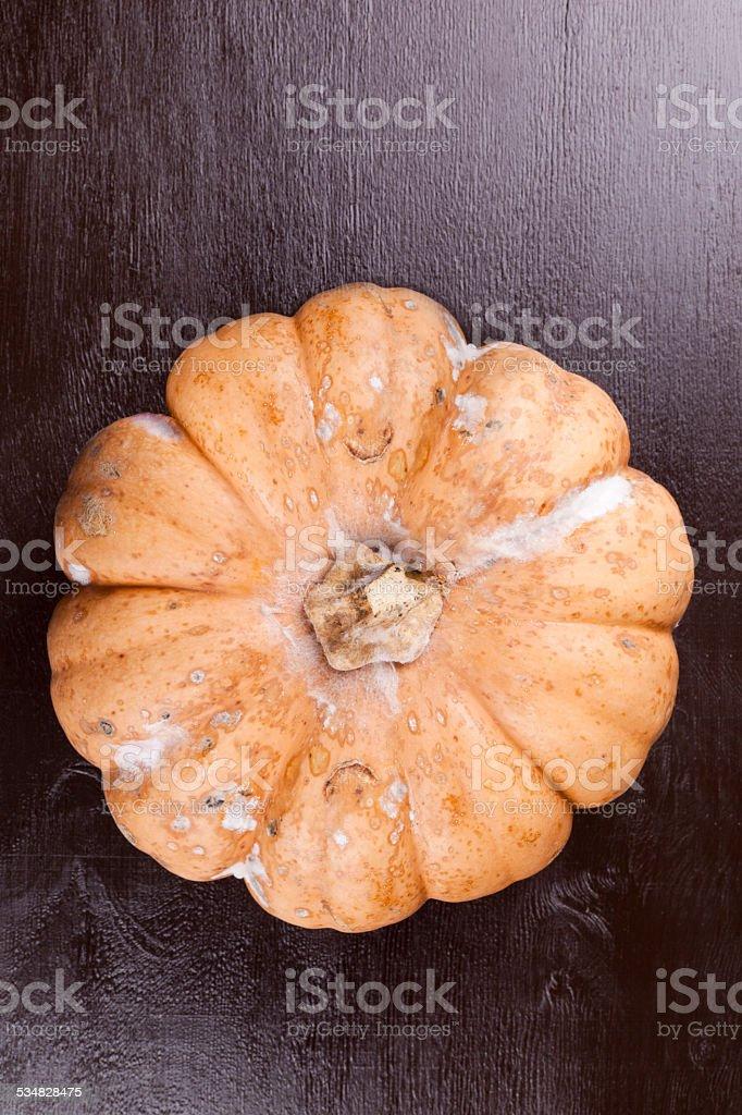 virus pumpkin stock photo
