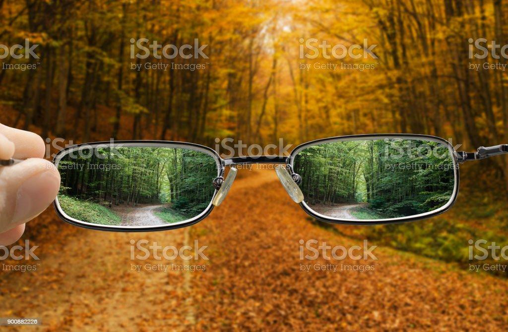 Vision des Drehens eines Herbst in den Frühling – Foto