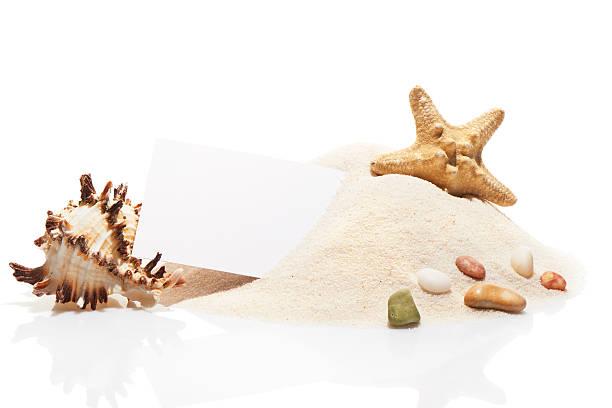 visit card, starfish, seashell and stones on pile of sand - pink and orange seashell background stockfoto's en -beelden