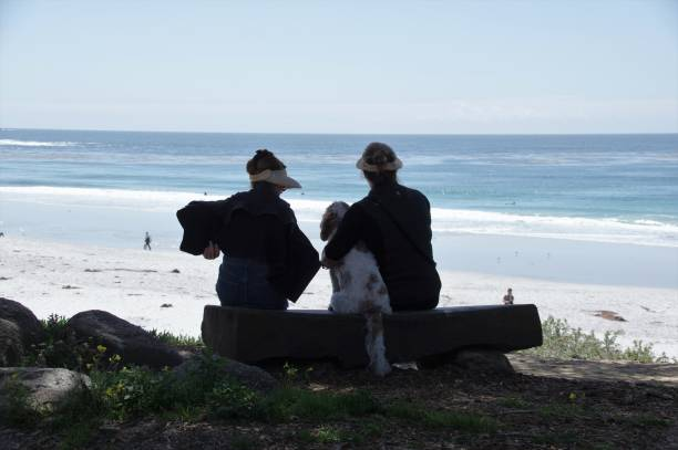 Visiting the beach picture id970402286?b=1&k=6&m=970402286&s=612x612&w=0&h=kiyueut2yoypqengucyjym 2b6ssa722 hgh0k03xmg=