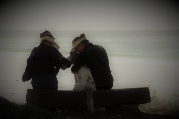 Visiting the beach picture id970402302?b=1&k=6&m=970402302&s=612x612&w=0&h=tebq6sguzjnluhyn1dibsri6frmdb kbsmlcstwkz88=