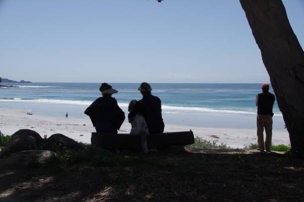 Visiting the beach picture id970402308?b=1&k=6&m=970402308&s=612x612&w=0&h=flfb34uazydorwz6nfczgzezcvhveqmck 5ts 899de=