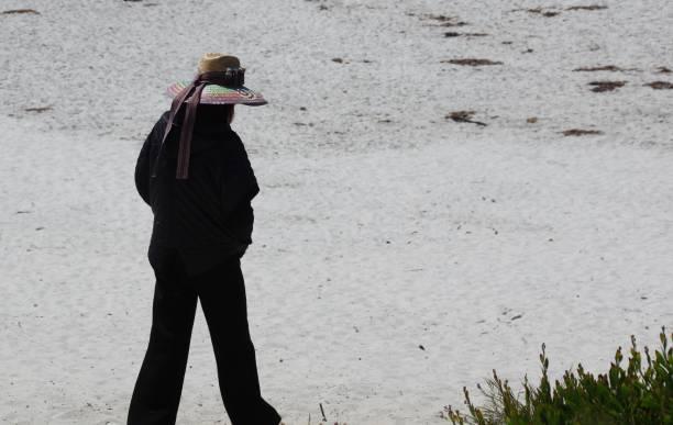 Visiting the beach picture id970402330?b=1&k=6&m=970402330&s=612x612&w=0&h=roigins90dxnbsgnerfu8p9g2mevaoqziqv y6pcmbq=