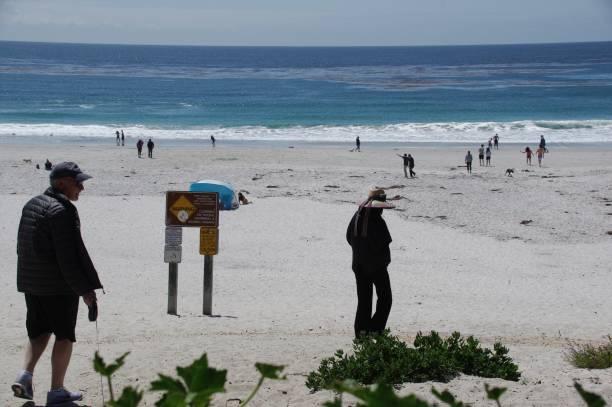 Visiting the beach picture id970402342?b=1&k=6&m=970402342&s=612x612&w=0&h=l9nvae2em8yutsbtn1f13r7px6fcy mvkeswgqpp8eu=