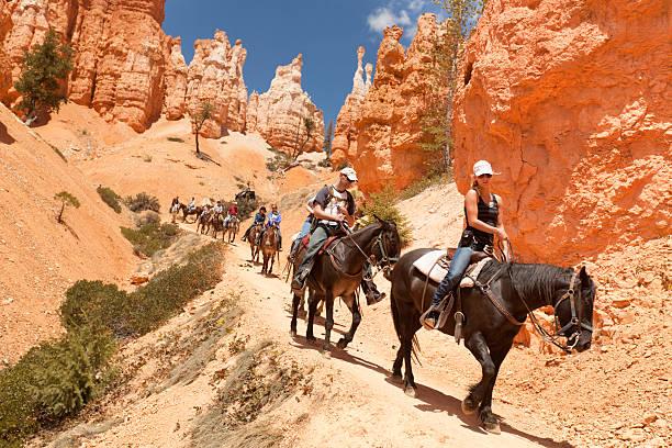 visitors on horse trail in bryce canyon national park - aardpiramide stockfoto's en -beelden