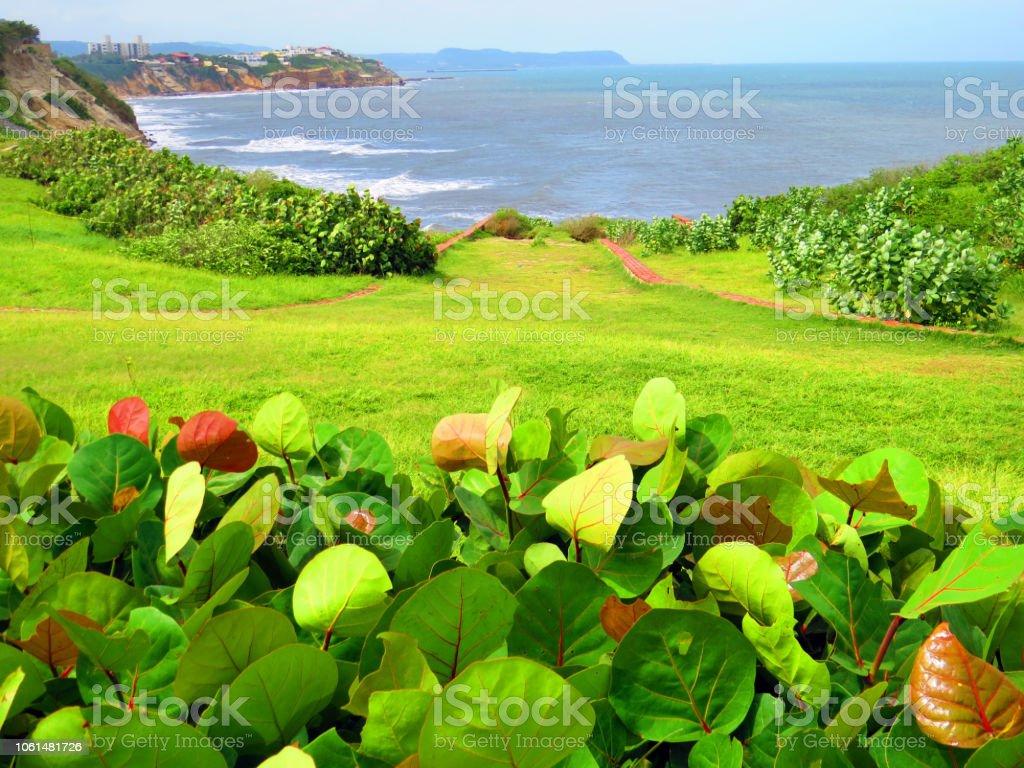 Vista al mar desde el jardín - foto de stock
