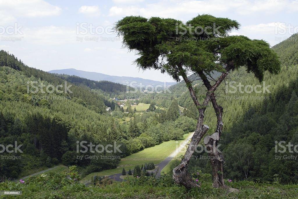 vista mountains royalty-free stock photo