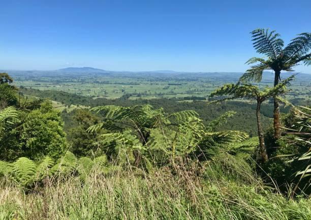 Vista of the Waikato region stock photo