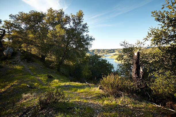 vista point over santa margarita lake - central coast california stock photos and pictures