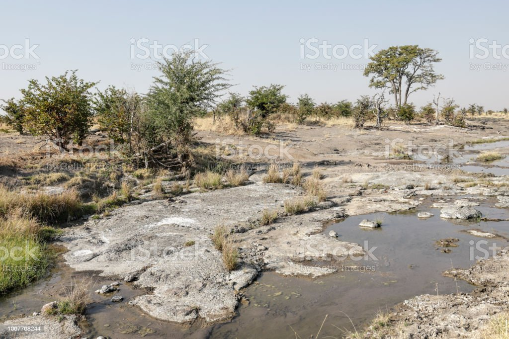 Vital water supply Hwange National Park Zimbabwe stock photo