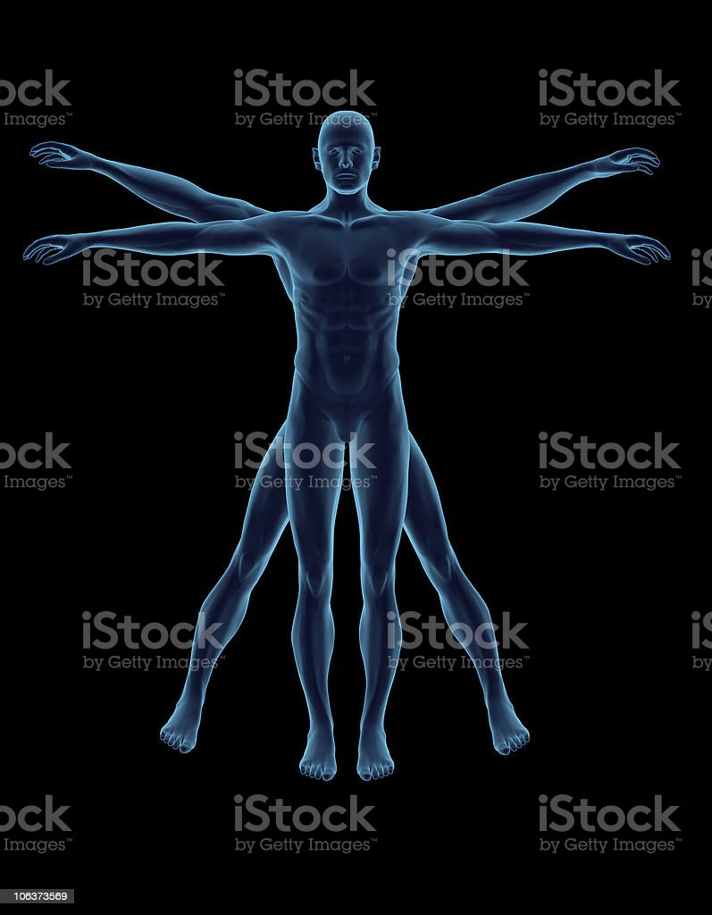 Vitruvian Man 3D stock photo