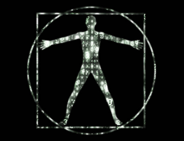 Vitruvian Man data array silhouette. stock photo