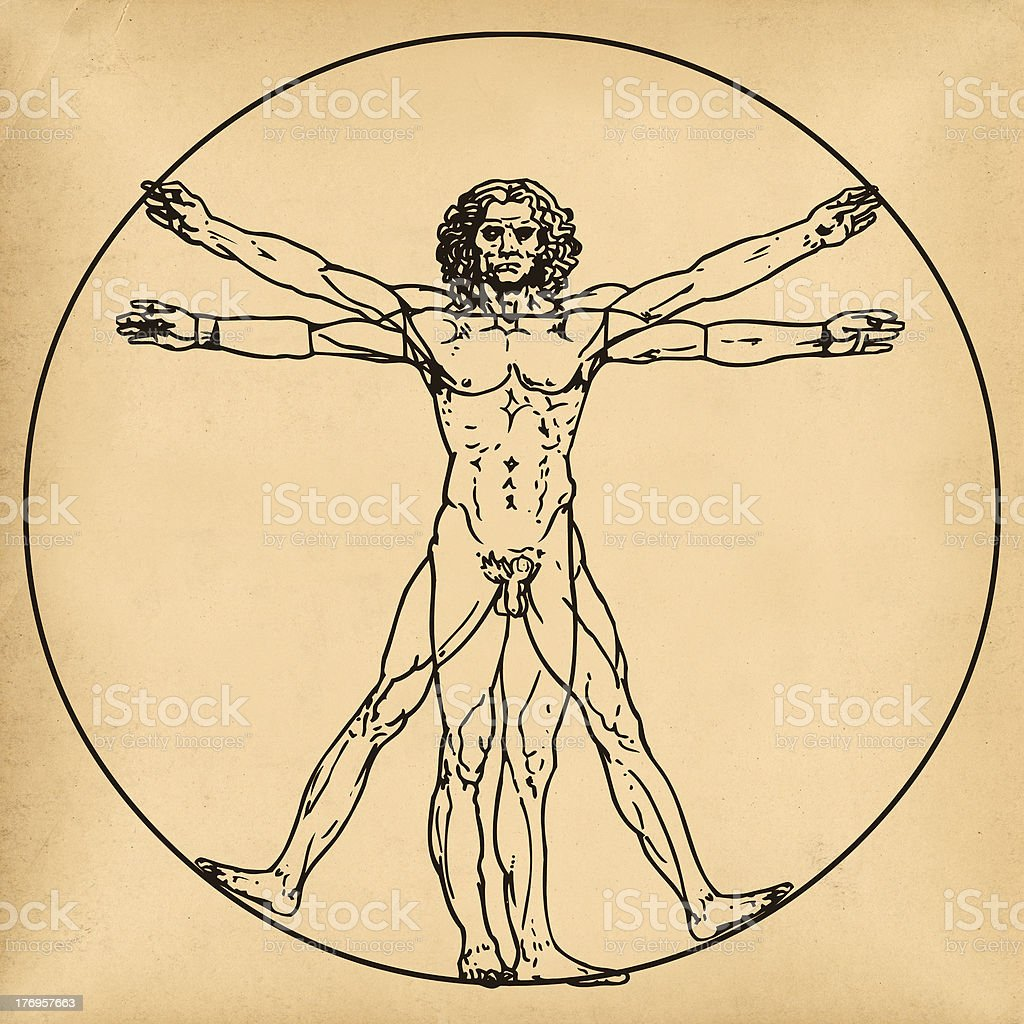 Vitruvian man on old paper background stock photo