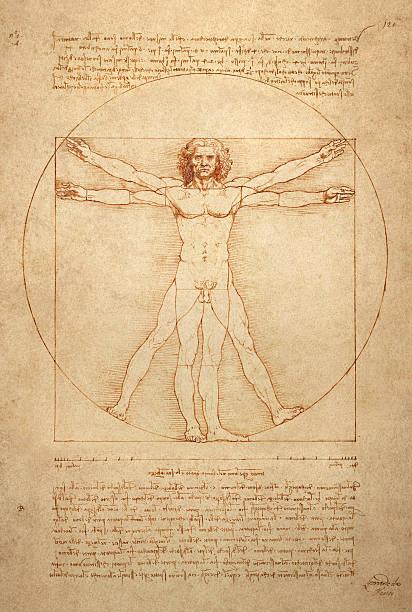 Vitruvian Man stock photo