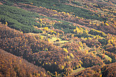 Autumn colors of the forests on Stara planina (Balkan mountains), Dojkinci, Serbia