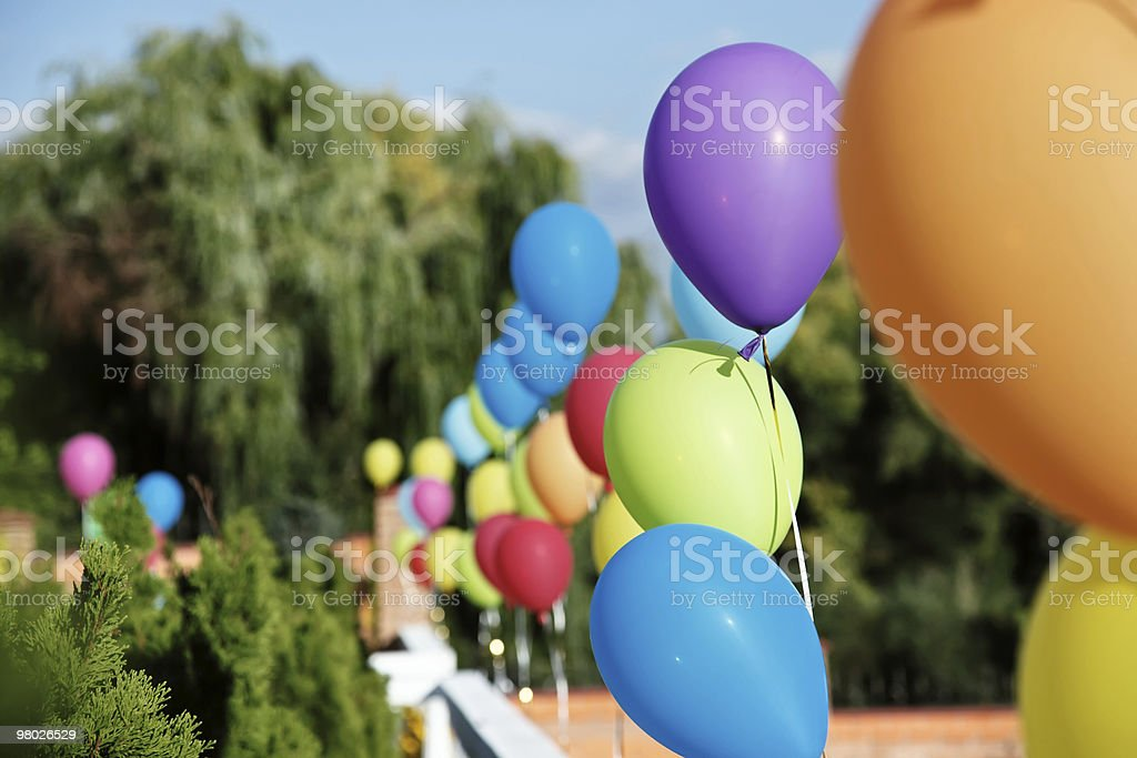 Vivid color balloons on green outdoor background royalty-free stock photo