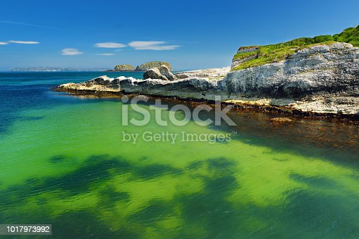 Vivid emerald-green water at Ballintoy harbour along the Causeway Coast in County Antrim. Rugged coastal landscape of Northern Ireland.