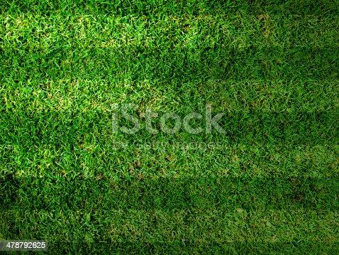 istock Vivid Green grass background 478792625