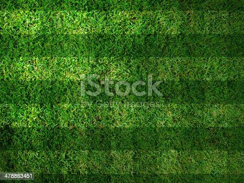 istock Vivid Green grass background 478863451