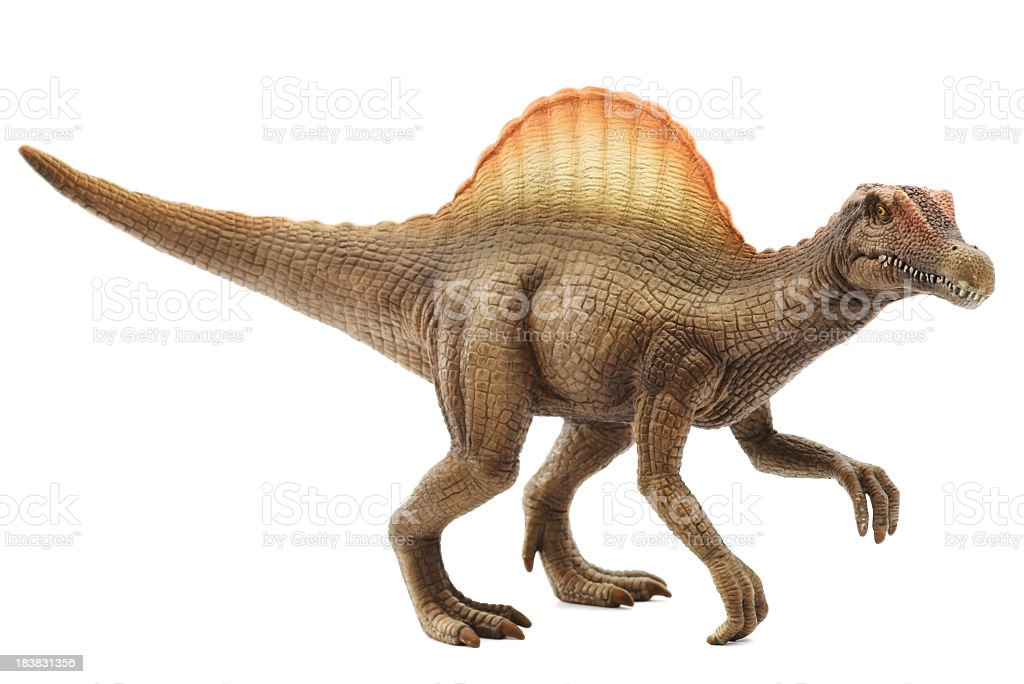 Vivid model of spinosaurus in white background stock photo