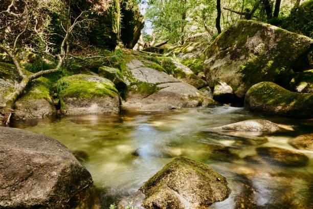 vizela river pontido - barragem portugal imagens e fotografias de stock