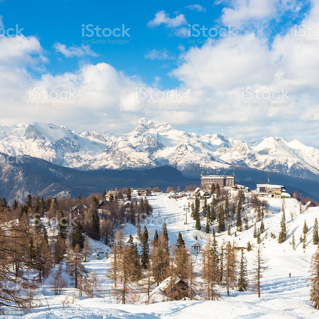 Vogel, Alpen, Slowenien, Europa. Lizenzfreies stock-foto