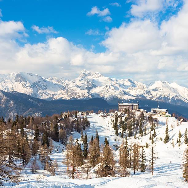 vogel, alpen, slowenien, europa. - hotel alpenblick stock-fotos und bilder