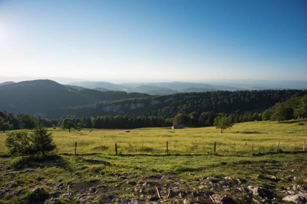 Vogelberg, Schweiz – Foto