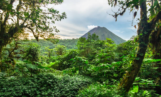 Volcan Arenal and Costa Rican Jungle stock photo