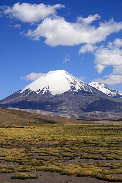 Vulkan Parinacota in Chile-Porträt – Foto