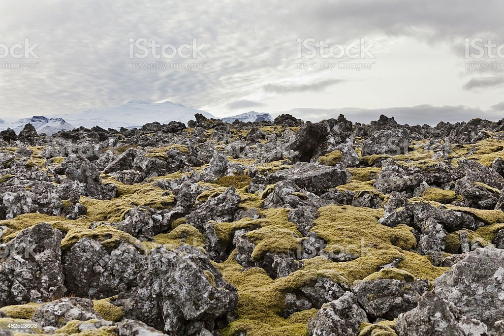 Volcanic field with Snaefellsjokul volcano at the back. stock photo