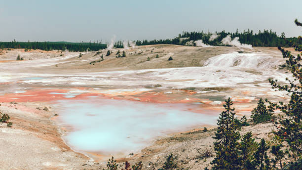Volcanic Geyser Landscape, Norris Geyser Basin, Yellowstone National Park stock photo