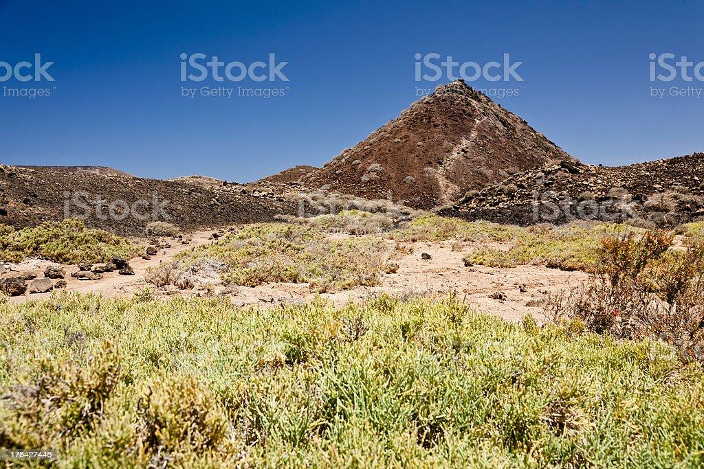 Volcanic landscape. Fuerteventura royalty-free stock photo