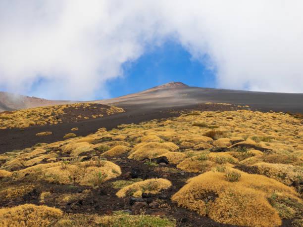 Vulkanlandschaft – Foto