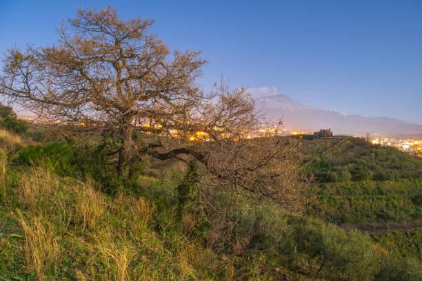 volcanic postcard – zdjęcie