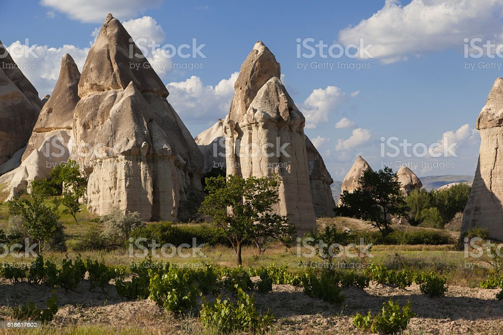 Volcanic rock formations in valley in Turkey stock photo