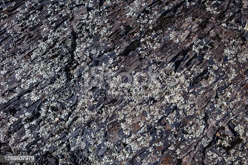 Volcanic Rock surface