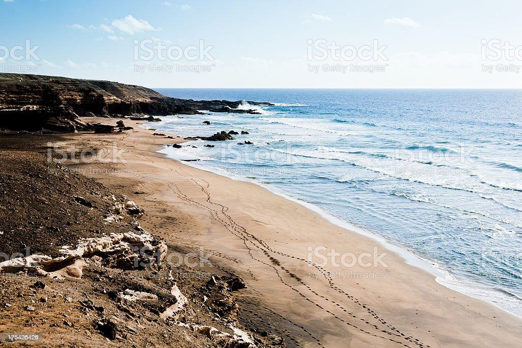 Volcanic seascape. Fuerteventura royalty-free stock photo
