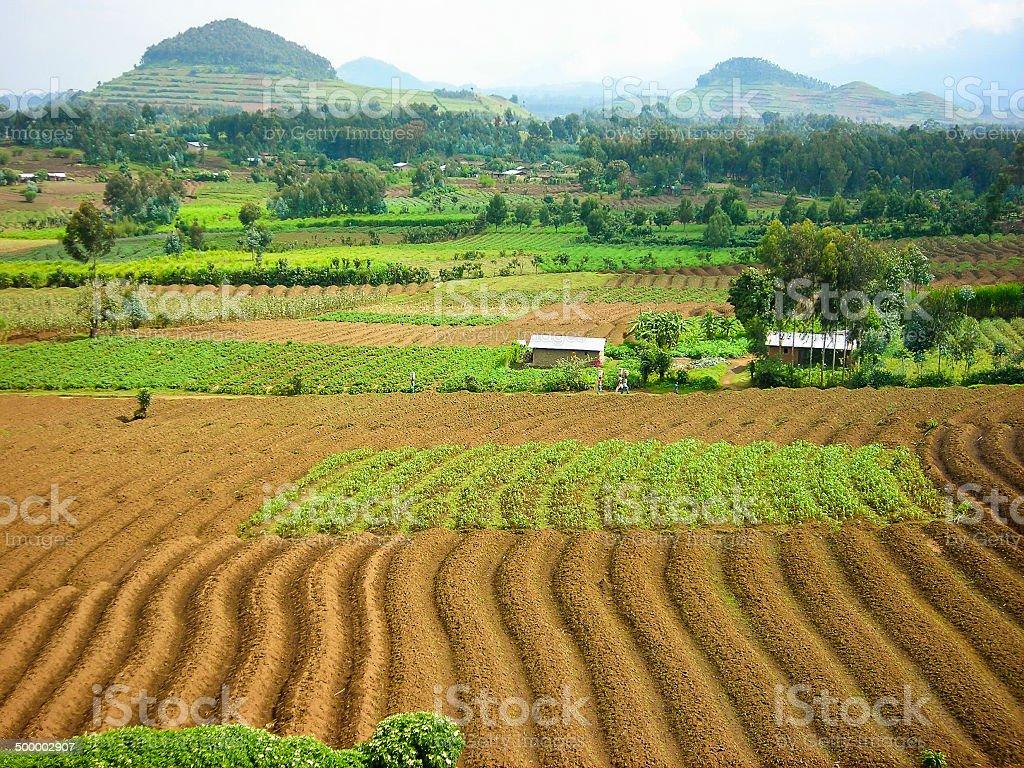 Volcanic soils and cinder cones former AUCA campus Mudende Rwanda stock photo