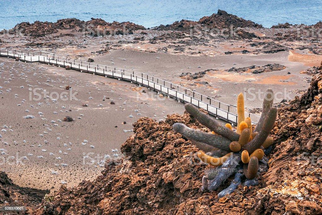 volcano island St. Bartolomé, Galapagos, Ecuador stock photo