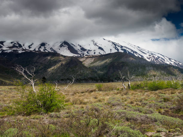 volcano lanin - stephen lynn stock pictures, royalty-free photos & images