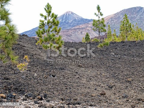 istock volcano Pico del Teide in national park of tenerife 504241829