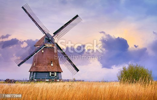Volendam, Netherlands. Traditional Holland landscape with typical dutch windmill and yellow grass field, evening sunset sky in countryside.