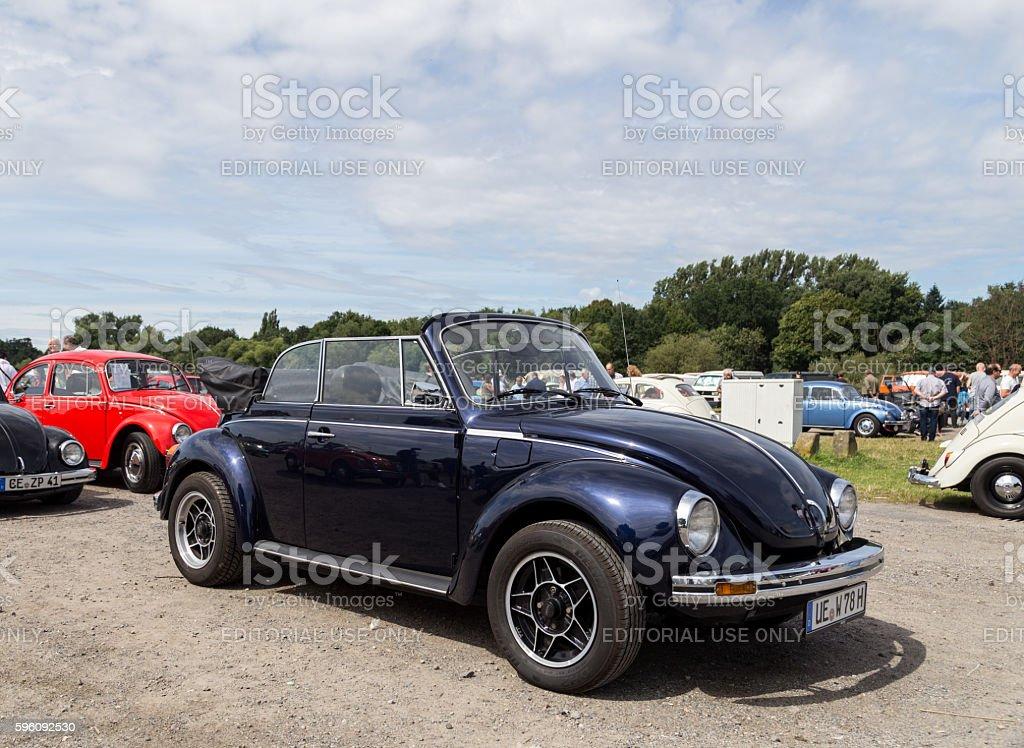Volkswagen Beetle Meeting in Celle, Germany Lizenzfreies stock-foto
