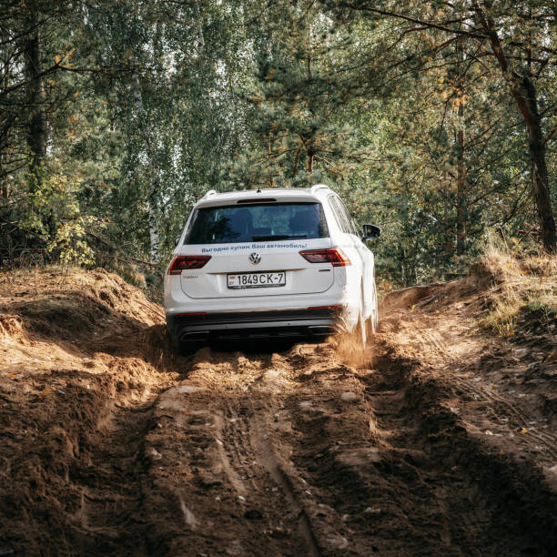 Volkswagen Tiguan 4x4 rides cross country in forest. stock photo