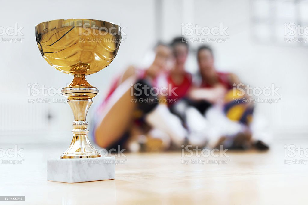 Volleyball champion cup. royalty-free stock photo