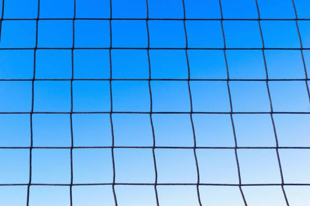 Royalty Free Volleyball Background Pictures, Images and ...