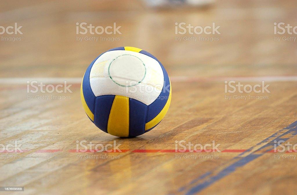 volleyball indoor stock photo