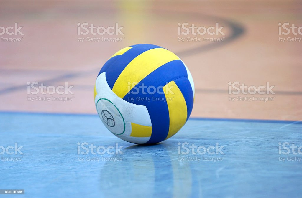 volleyball indoor royalty-free stock photo