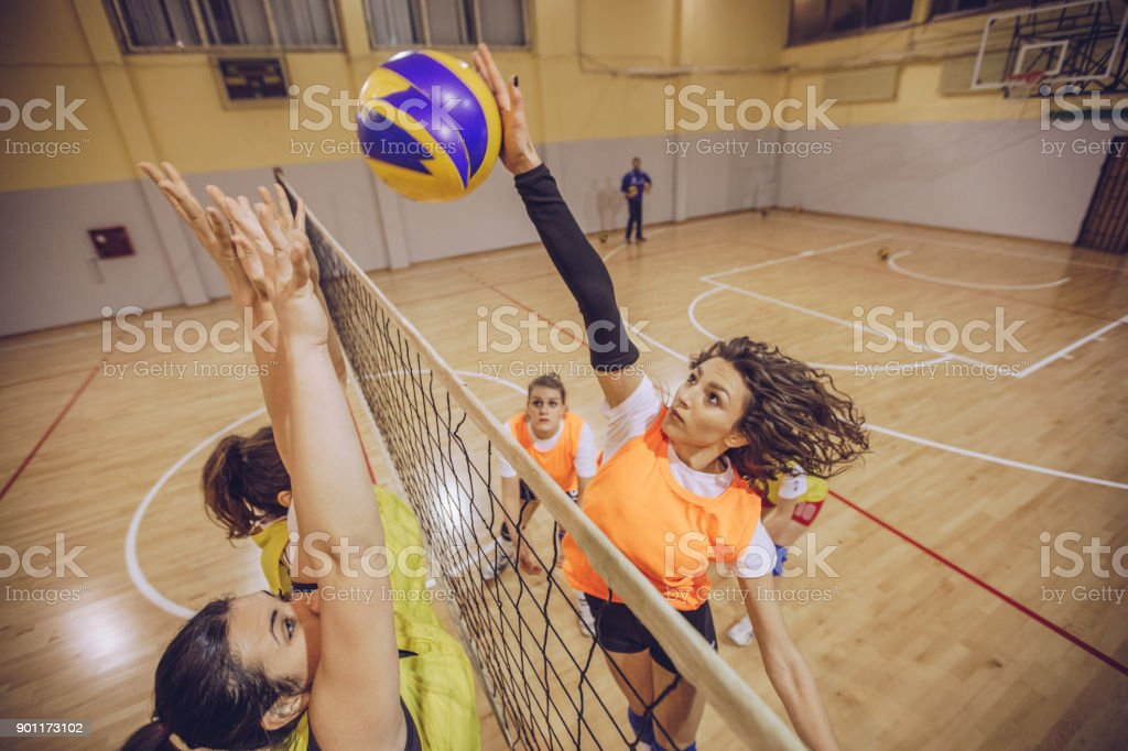 Volleyball team in action stock photo